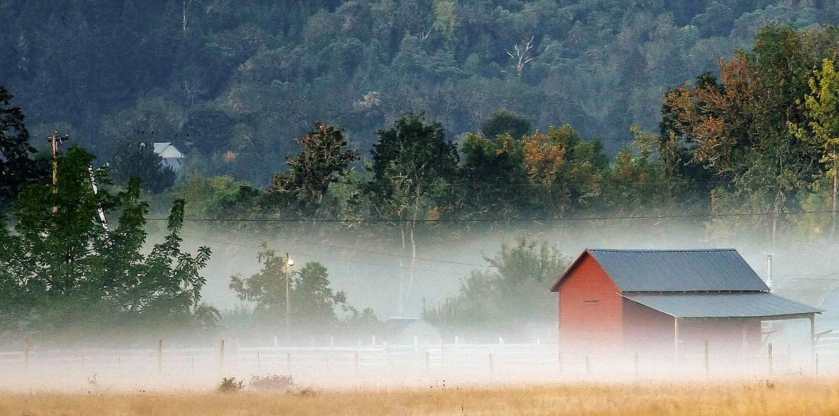 foggy barn2